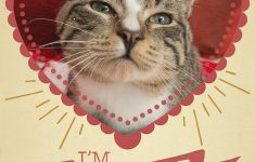 12 Kitty-Cat Valentine's Day Cards That Will Make You Aww – Sheknows - Free Printable Cat Valentine Cards