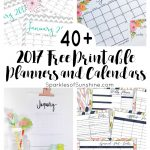 40+ Awesome Free Printable 2017 Calendars And Planners   Sparkles Of   Free 2018 Planner Printable