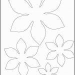 5 Petal Flower Template Printable   Happy Living   5 Petal Flower Template Free Printable