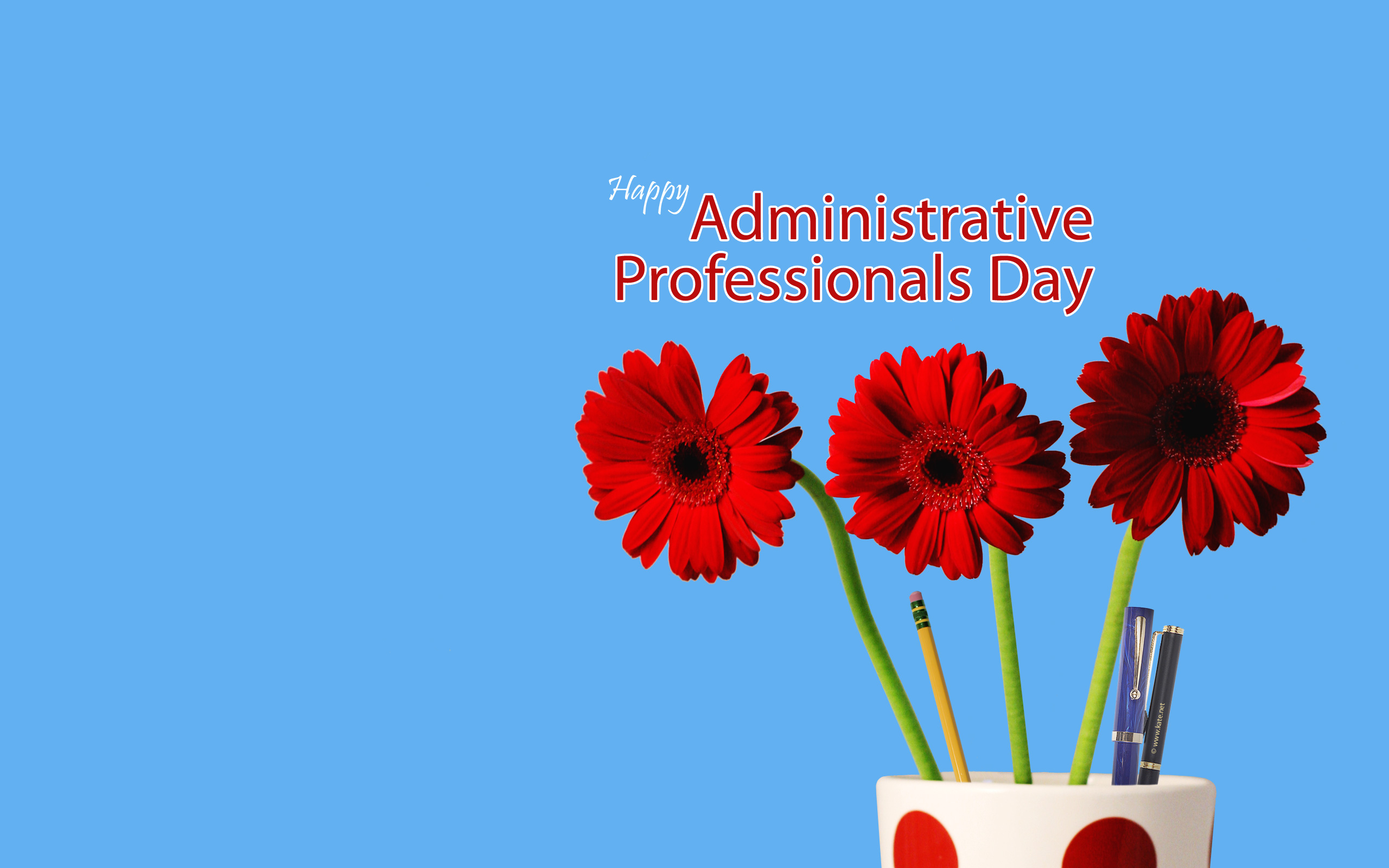 Administrative Professionals Day Wallpaperkate - Administrative Professionals Cards Printable Free