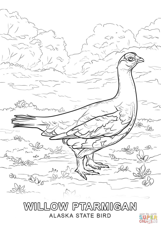 Alaska State Bird Coloring Page | Free Printable Coloring Pages - Free Printable Pictures Of Alaska