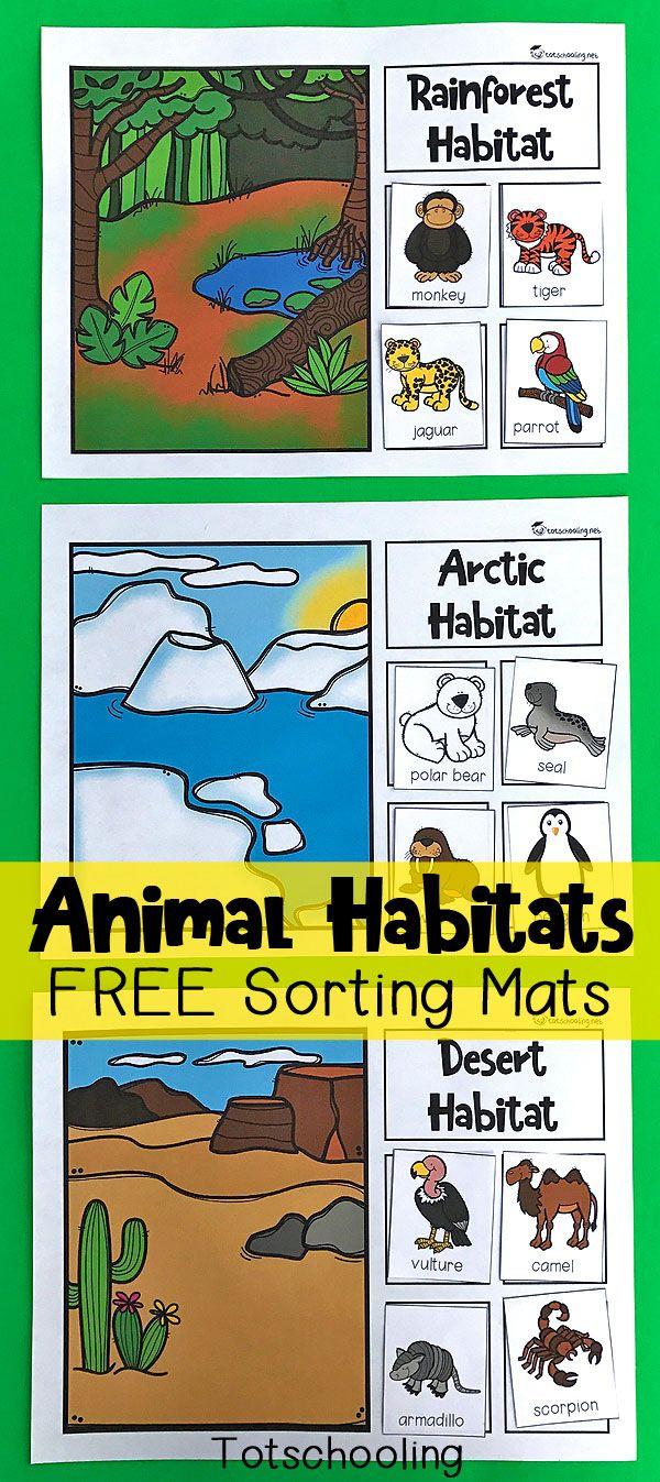Animal Habitats Sorting Mats | Preschool | Pinterest | Animal - Free Printable Worksheets Animal Habitats