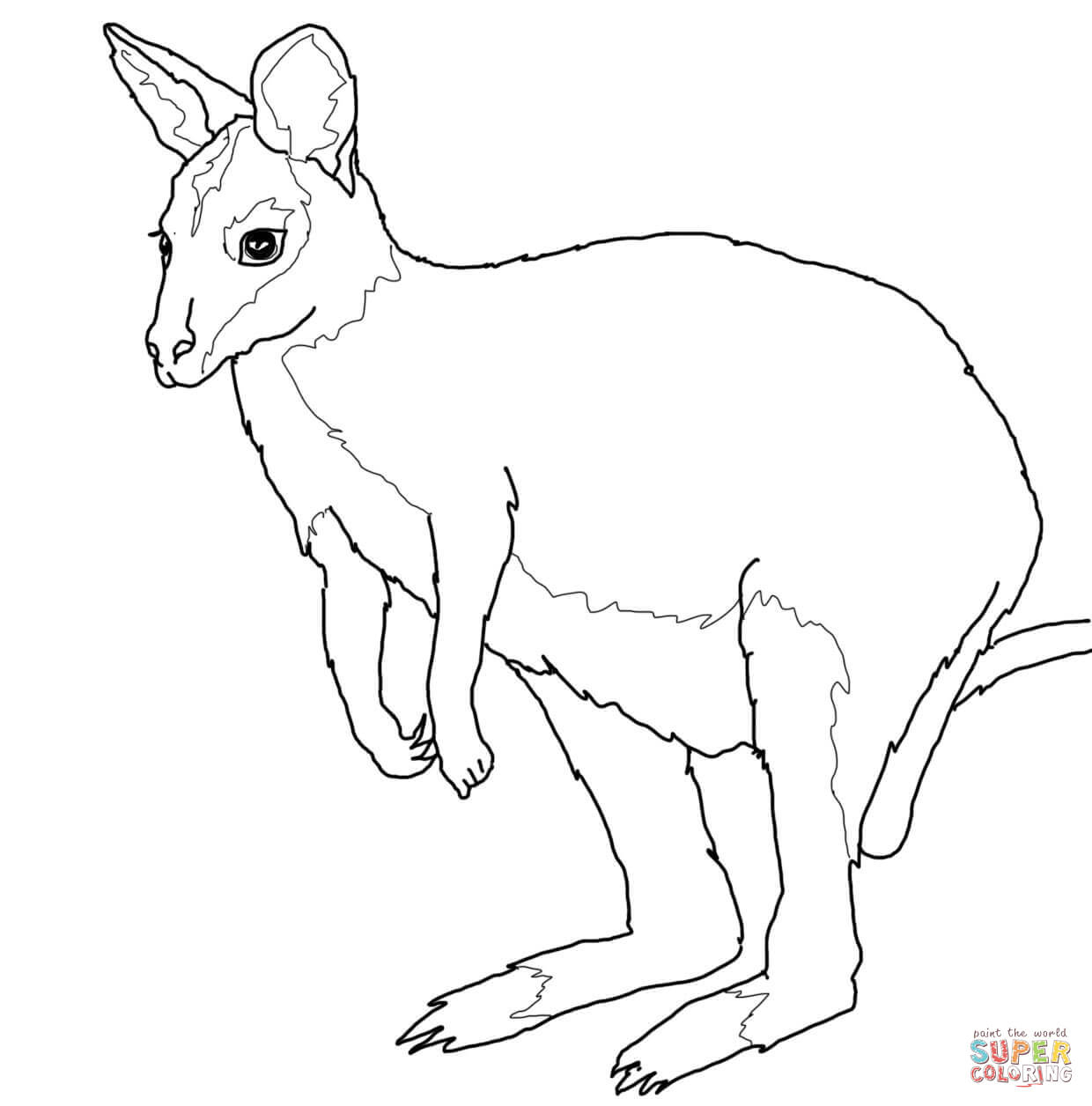 Australian Animals Coloring Pages | Free Printable Pictures - Free Printable Australian Animals