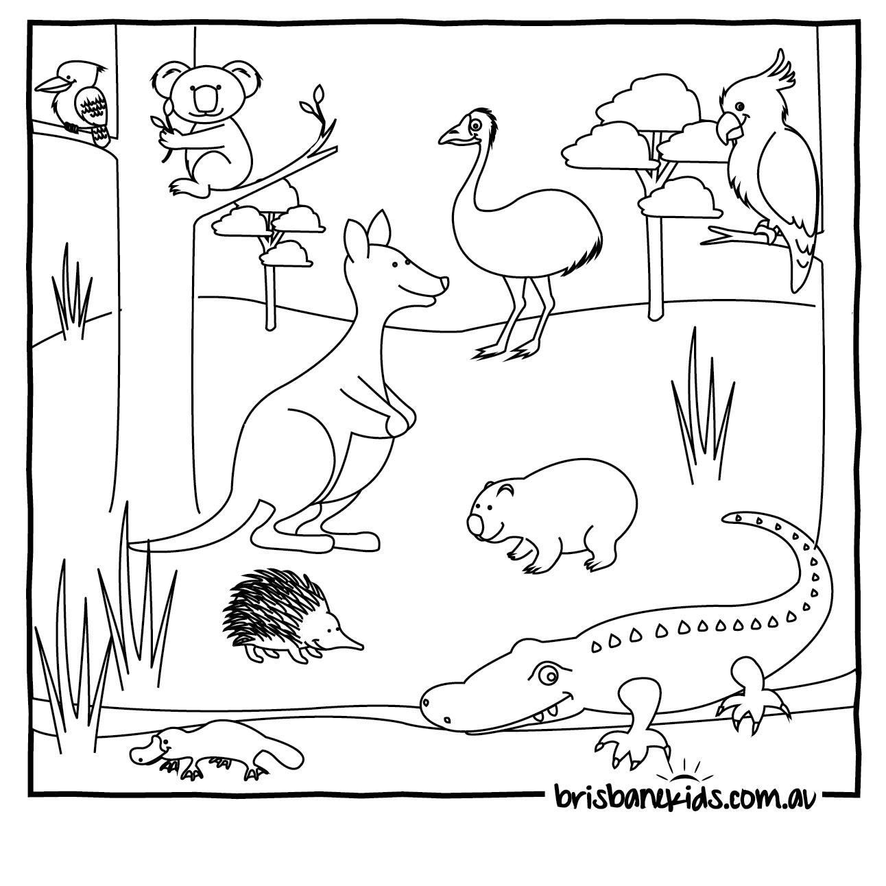 Australian Animals Colouring Pages | Brisbane Kids - Free Printable Australian Animals