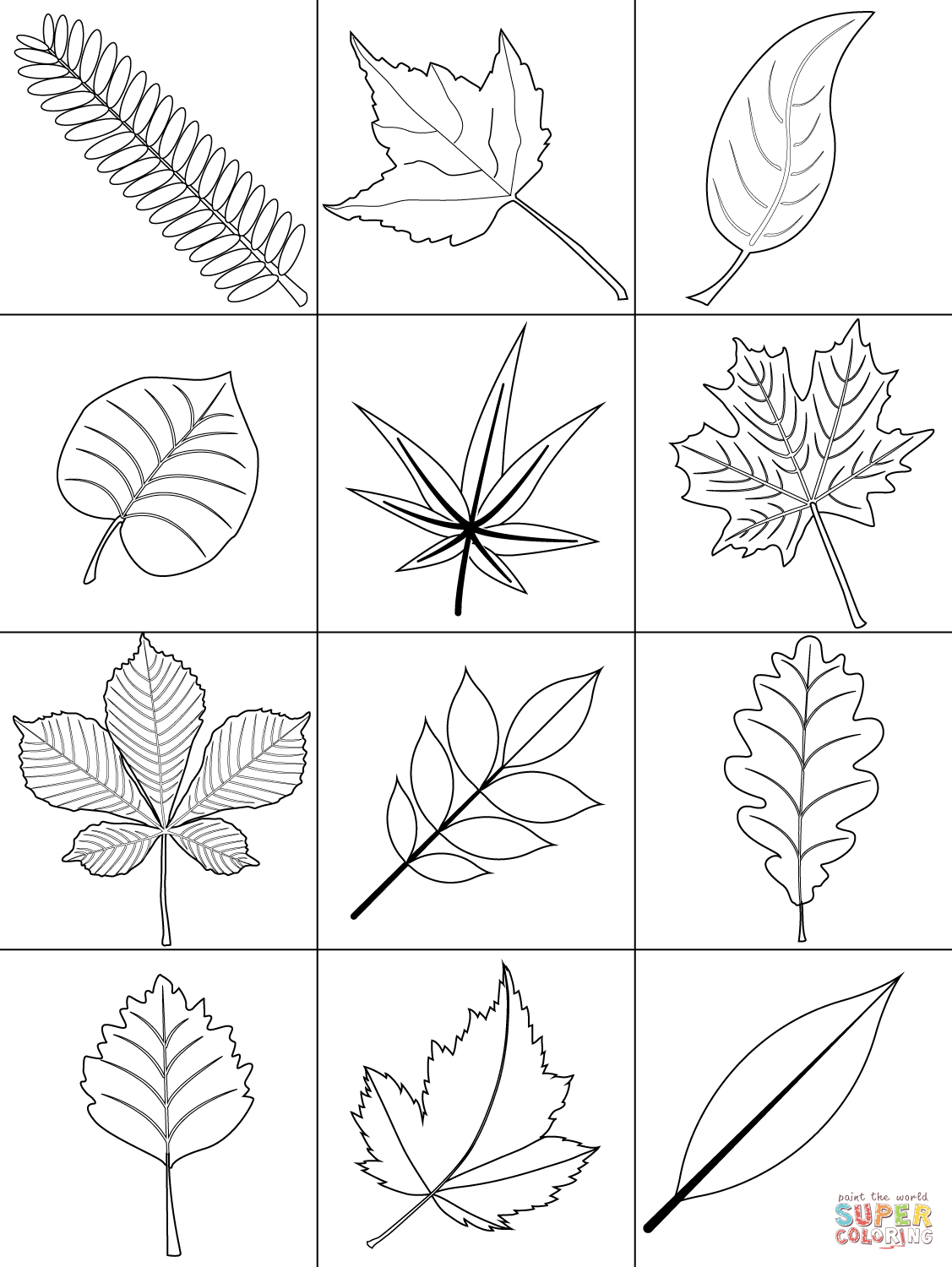Autumn Leaves Coloring Page | Free Printable Coloring Pages - Free Printable Pictures Of Autumn Leaves