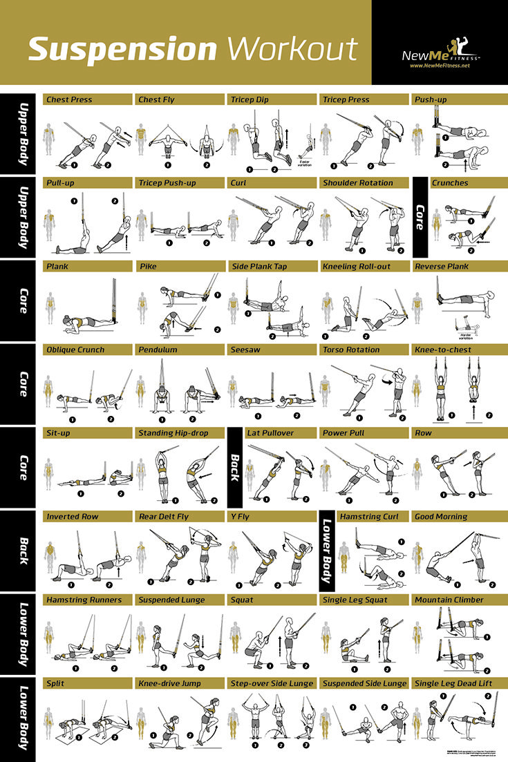 Awesome Suspension Exercise Poster For Trx Workouts! I've Never Seen - Free Printable Trx Workouts