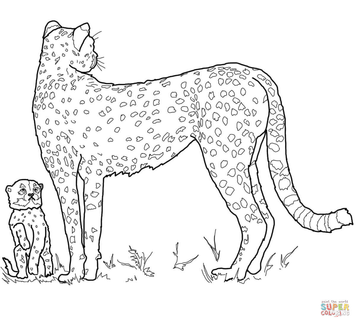 Baby Cheetah And Mother Coloring Page | Free Printable Coloring Pages - Free Printable Cheetah Pictures