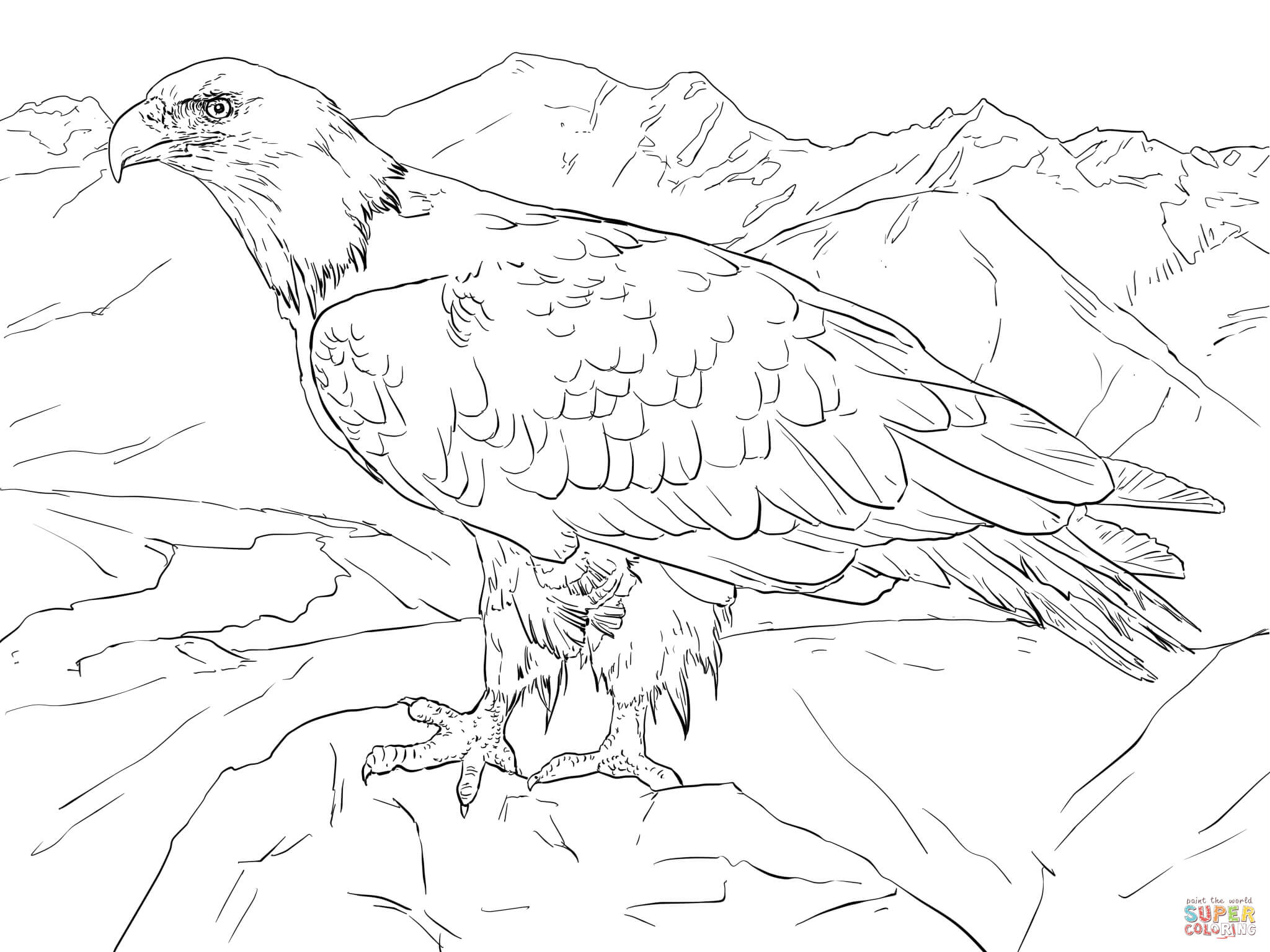 Bald Eagle From Alaska Coloring Page | Free Printable Coloring Pages - Free Printable Pictures Of Alaska