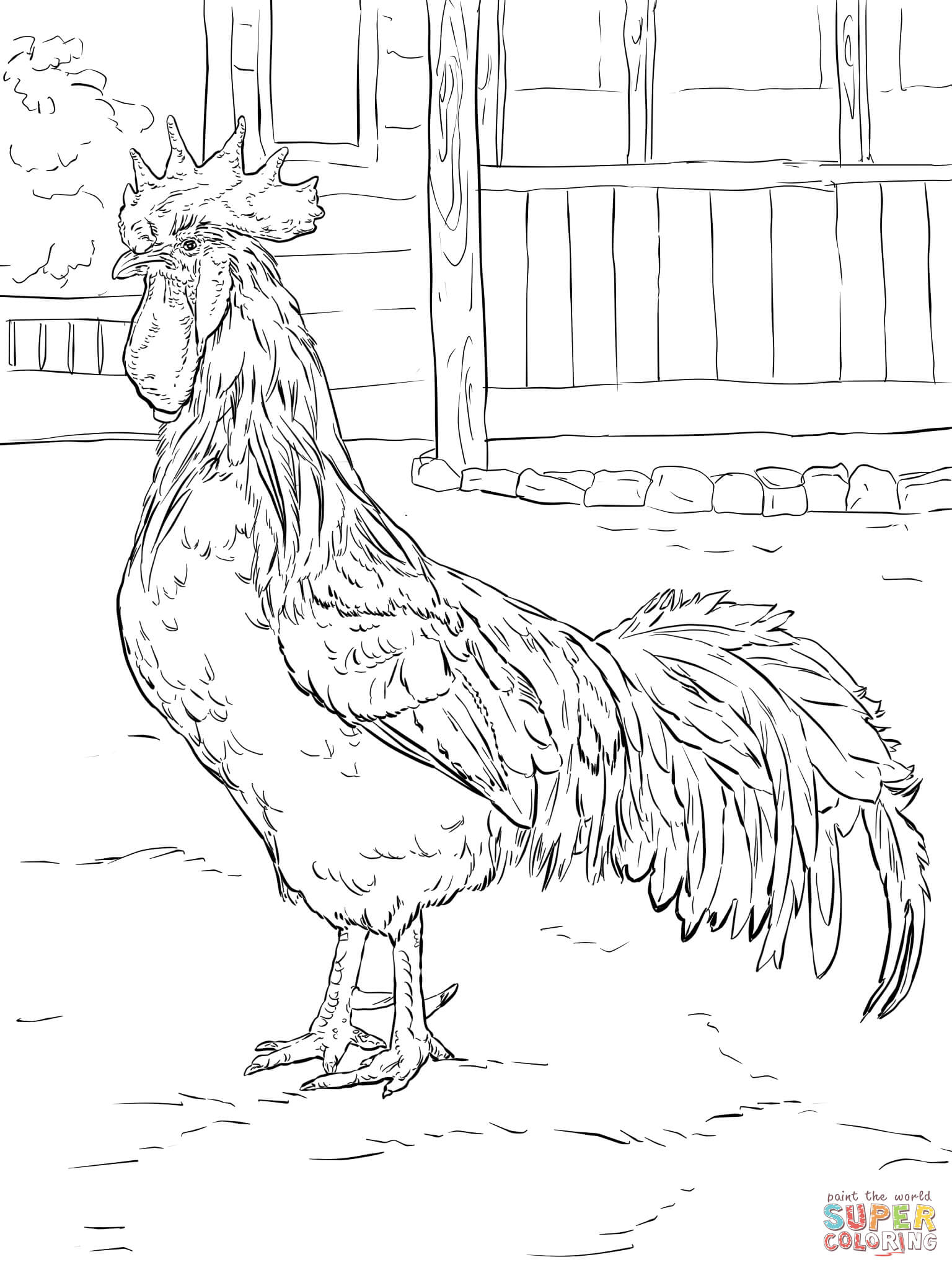 Brown Leghorn Rooster Coloring Page | Free Printable Coloring Pages - Free Printable Pictures Of Roosters