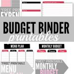 Budget Binder Printables   Single Moms Income   Free Printable Financial Binder