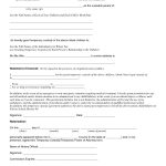 Child Custody Agreement Special Best S Of Temporary Guardianship   Free Printable Temporary Guardianship Form