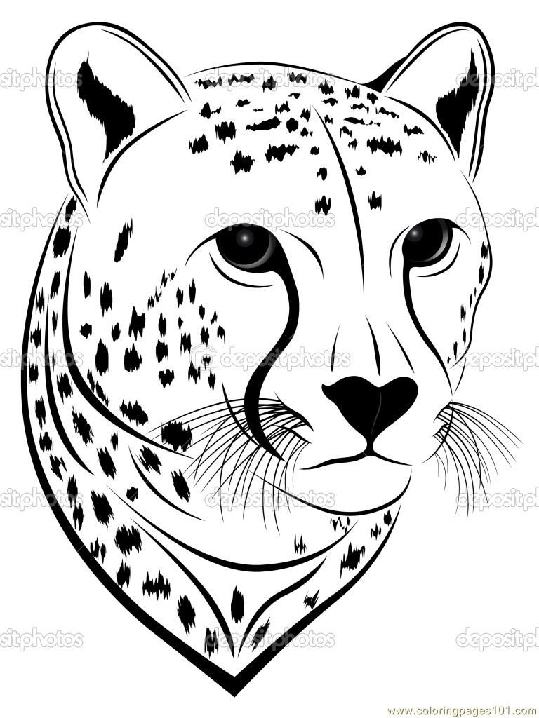 Coloring Pages Cheetah Face (Mammals > Cheetah) - Free Printable - Free Printable Cheetah Pictures