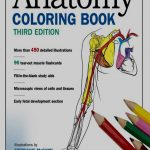 Coloring Pages : Coloring Pagesle Book Free Anatomy On Google   Free Printable Muscle Flashcards