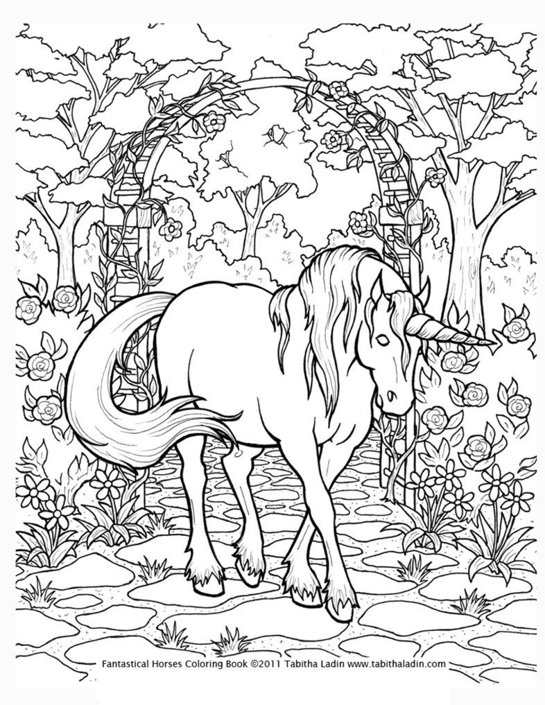Coloring Pages For Adults Only | Unicorn Coloring Page*tablynn - Free Printable Unicorn Coloring Pages