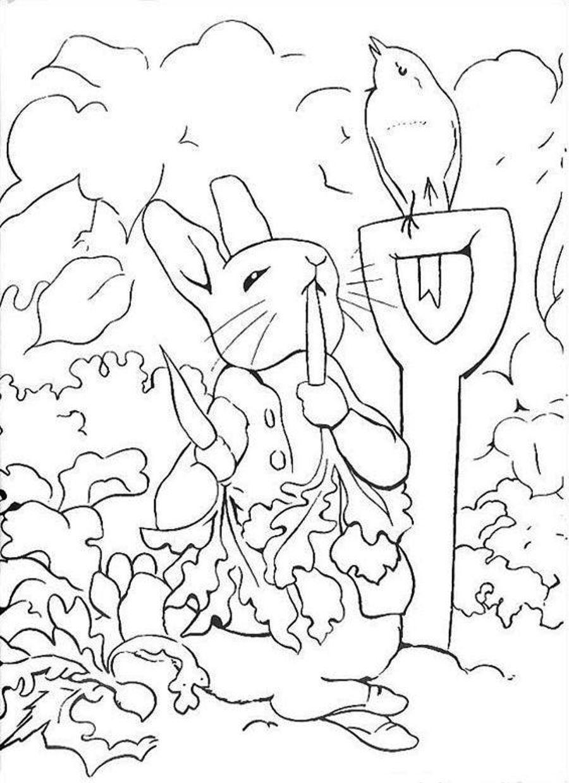 Coloring Pages Peter Rabbit 05 | Color Me Suprized | Pinterest - Free Printable Peter Rabbit Coloring Pages