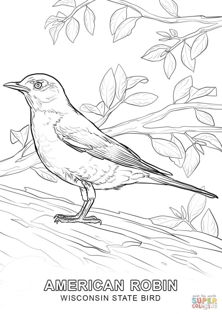 Free Printable Images Of Birds
