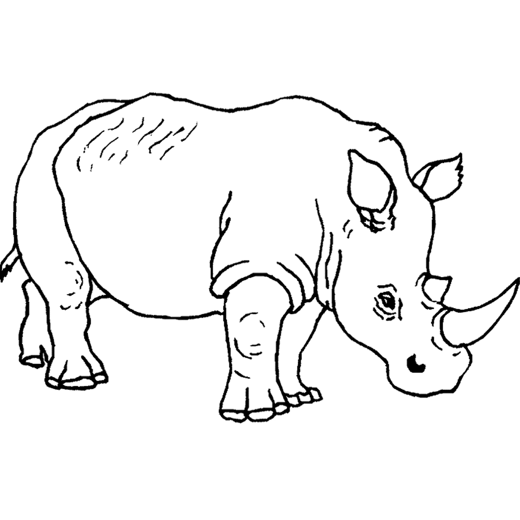 Coloring Pages : Wild Animaloloring Sheets Animals Pages Amazing - Free Printable Wild Animal Coloring Pages