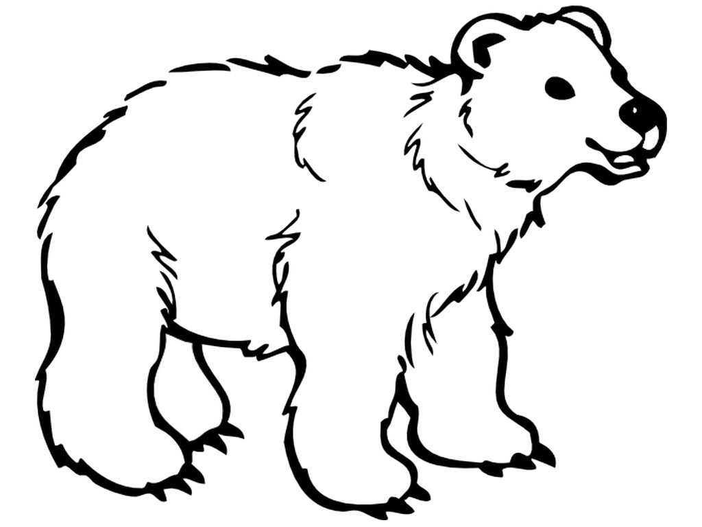 Cute Polar Bear Coloring Pages — Classic Style : Printable Polar - Polar Bear Printable Pictures Free