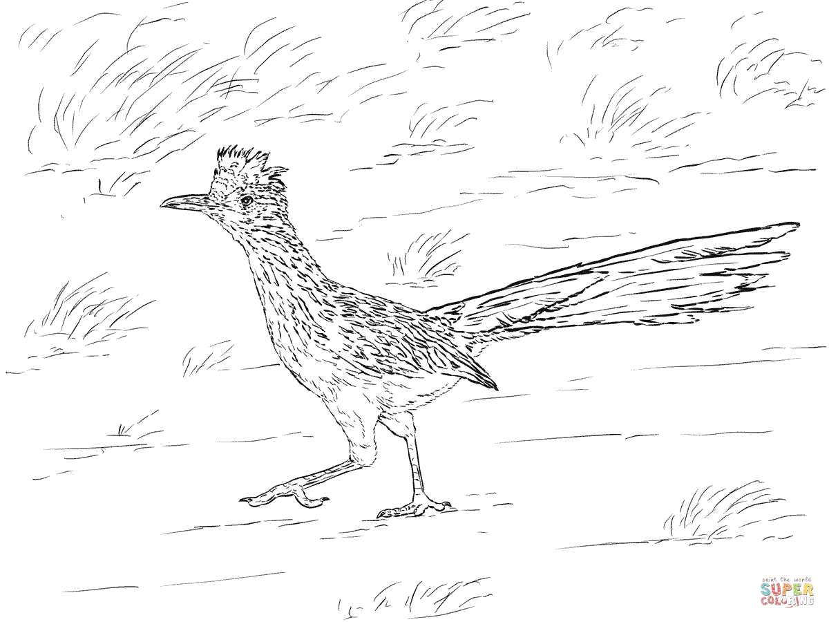 Desert Animals Coloring Pages   Free Printable Pictures - Free Printable Desert Animals