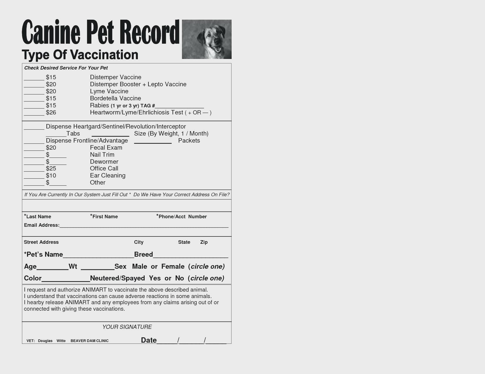 Dog Vaccination Chart Printable - Www.essaywritesystem - Free Printable Dog Shot Records