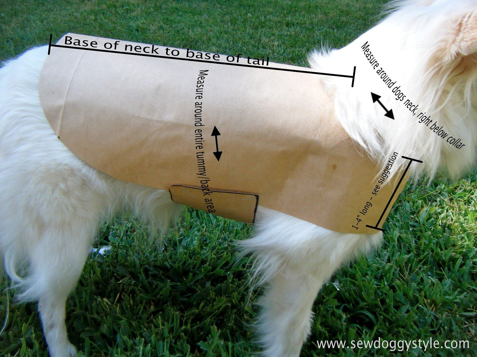 Drafting A Pet Coat Pattern - So Easy! | Crafts: Clever Crafts | Dog - Free Printable Sewing Patterns For Dog Clothes