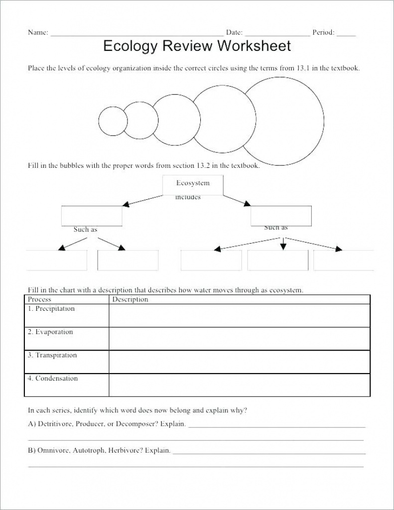 Ecology For Kids Worksheets – Derminelift Regarding Free Printable - Free Printable Biology Worksheets For High School