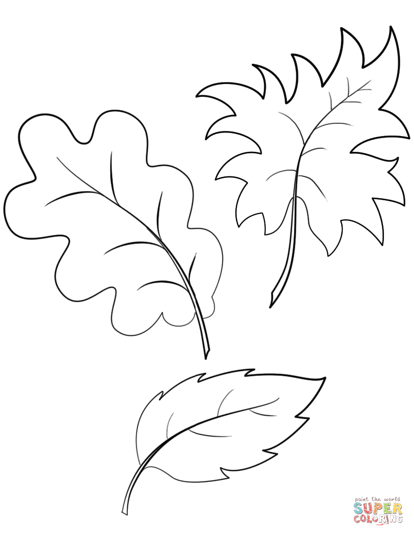 Fall Autumn Leaves Coloring Page | Free Printable Coloring Pages - Free Printable Leaf Coloring Pages