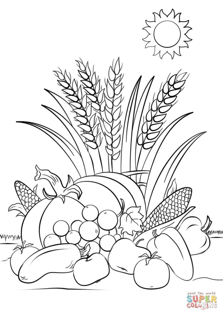 Free Printable Coloring Pages Fall Season