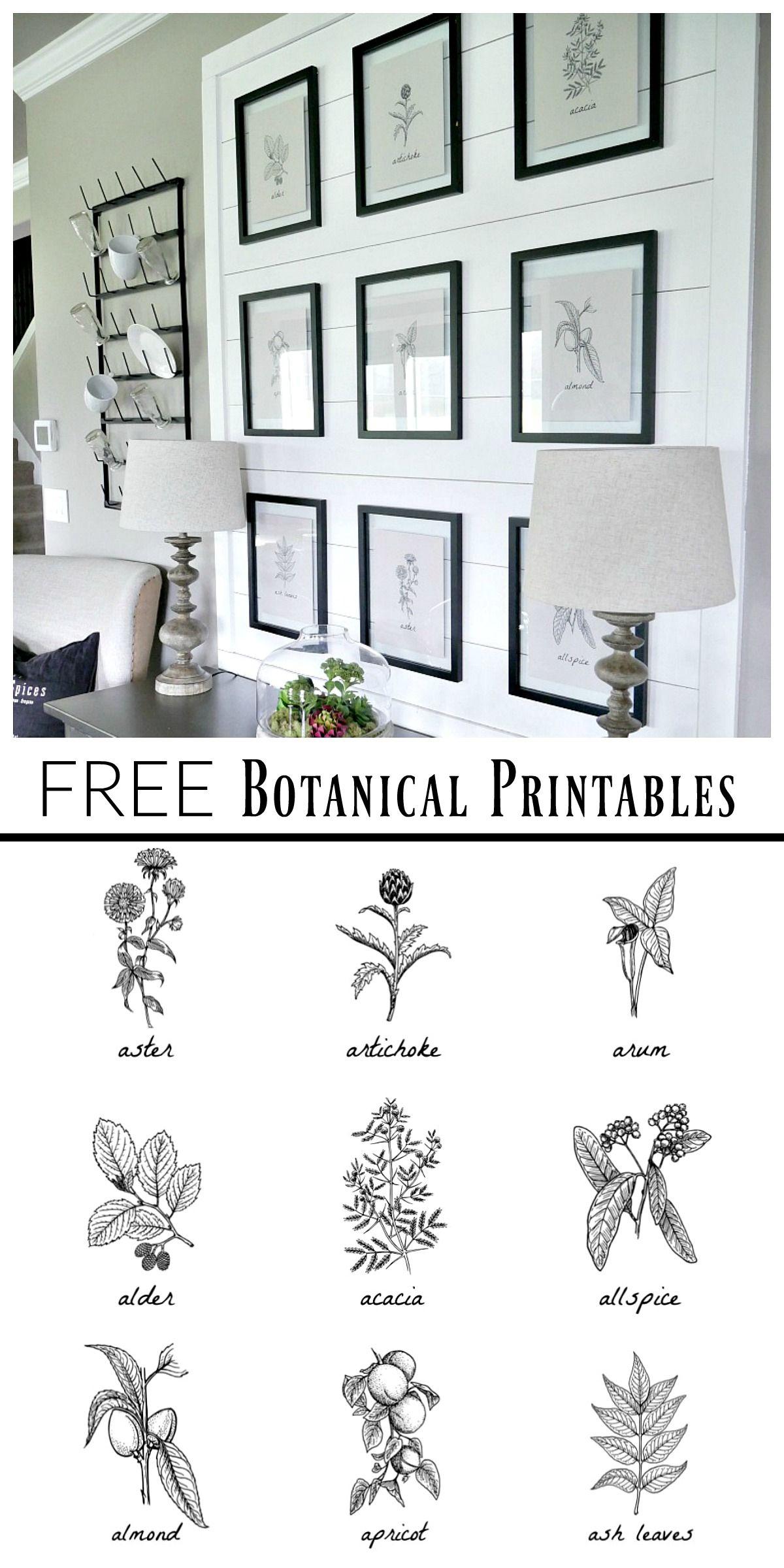 Free Botanical Prints | Bloggers' Best Diy Ideas | Dining Room - Free Black And White Printable Art