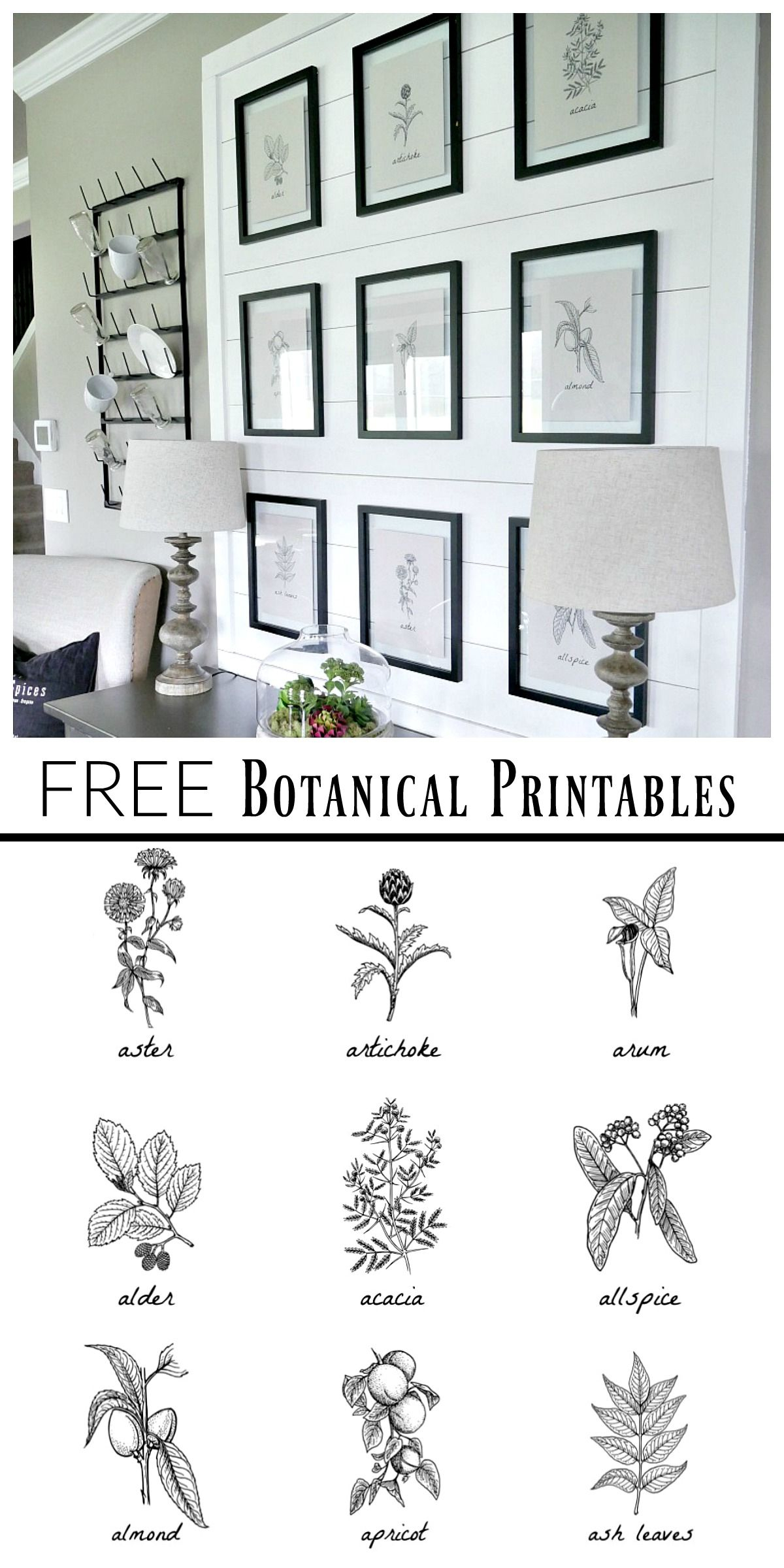 Free Botanical Prints | Bloggers' Best Diy Ideas | Diy Wall Art - Free Printable Artwork