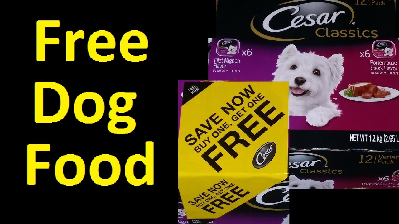Free Dog Food Cesar Dog Food Coupon Voucher ~ I Got Over $2500 - Youtube - Free Printable Dog Food Coupons
