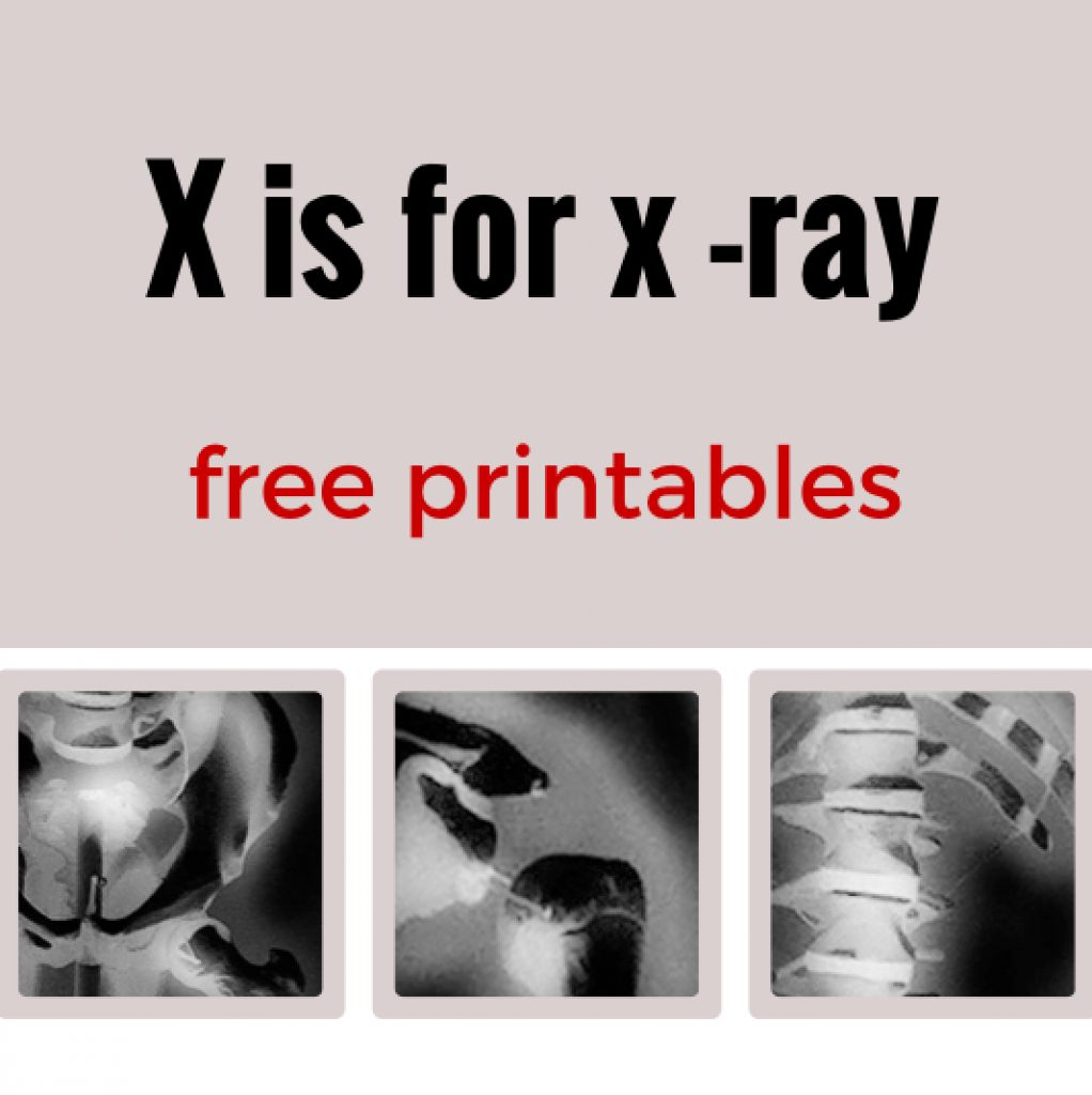 Free Printable Animal X Rays   Free Printable - Free Printable Animal X Rays