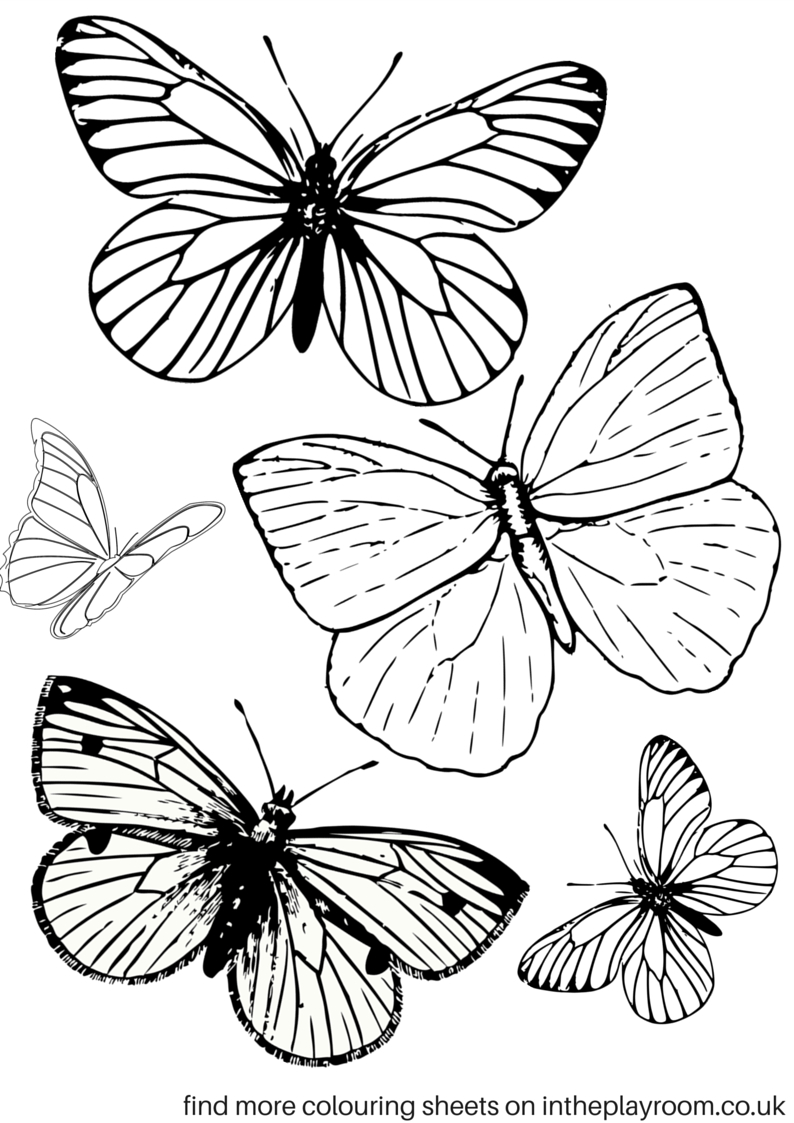 Free Printable Butterfly Colouring Pages | Coloring Tutorials - Free Printable Butterfly Pictures