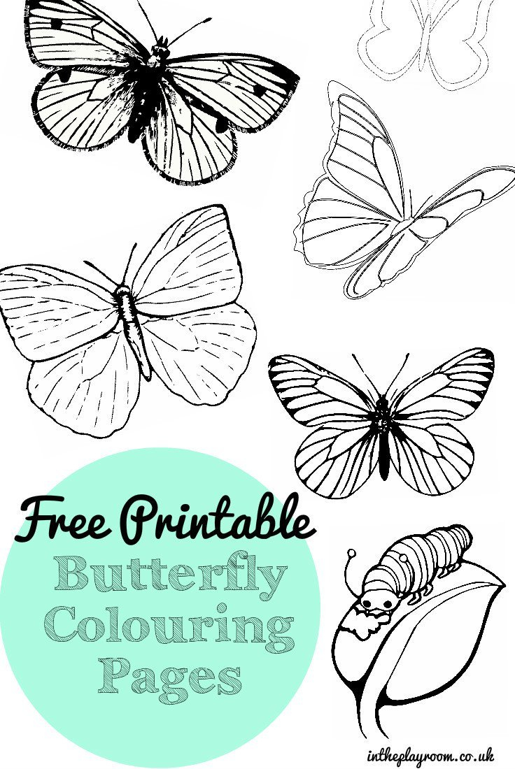 Free Printable Butterfly Colouring Pages - In The Playroom - Free Printable Butterfly