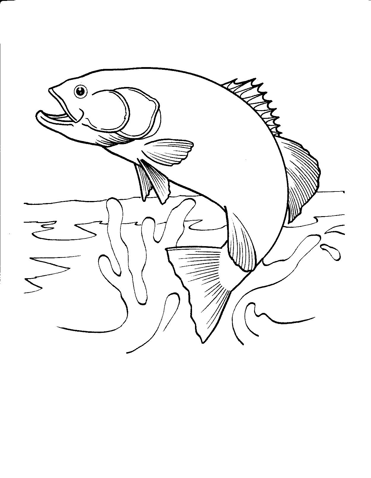 Free Printable Fish Coloring Pages For Kids | Honey Look | Fish - Free Printable Fish Coloring Pages