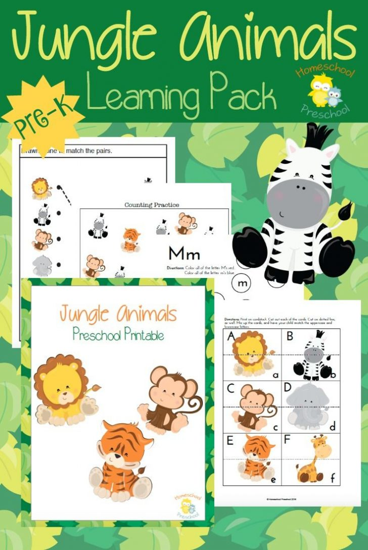 Free Printable Early Childhood Activities