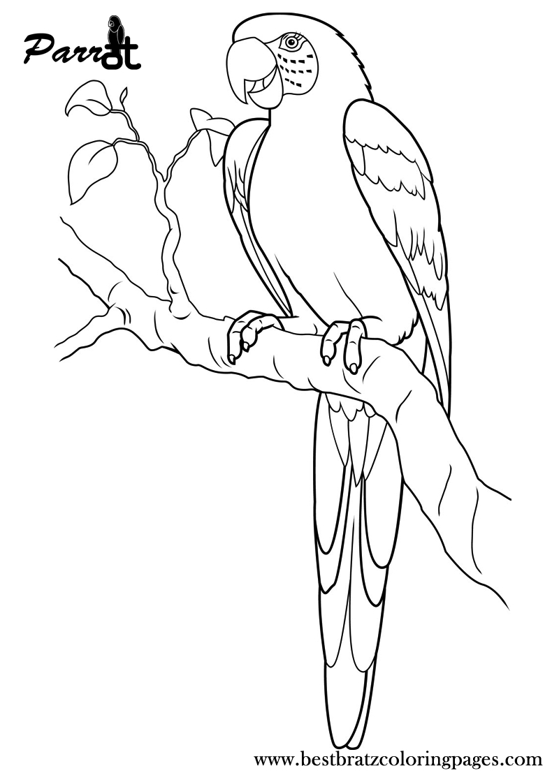 Free Printable Parrot Coloring Pages For Kids | Coloring Pages - Free Printable Parrot Coloring Pages