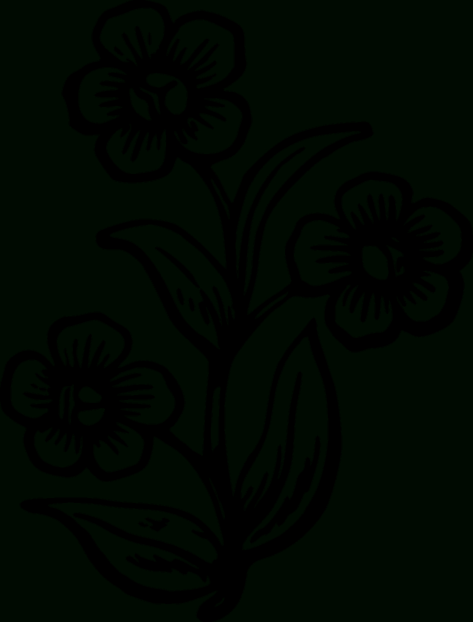 Free Printable Photos Of Flowers - Rr Collections - Free Printable Flower Stencils