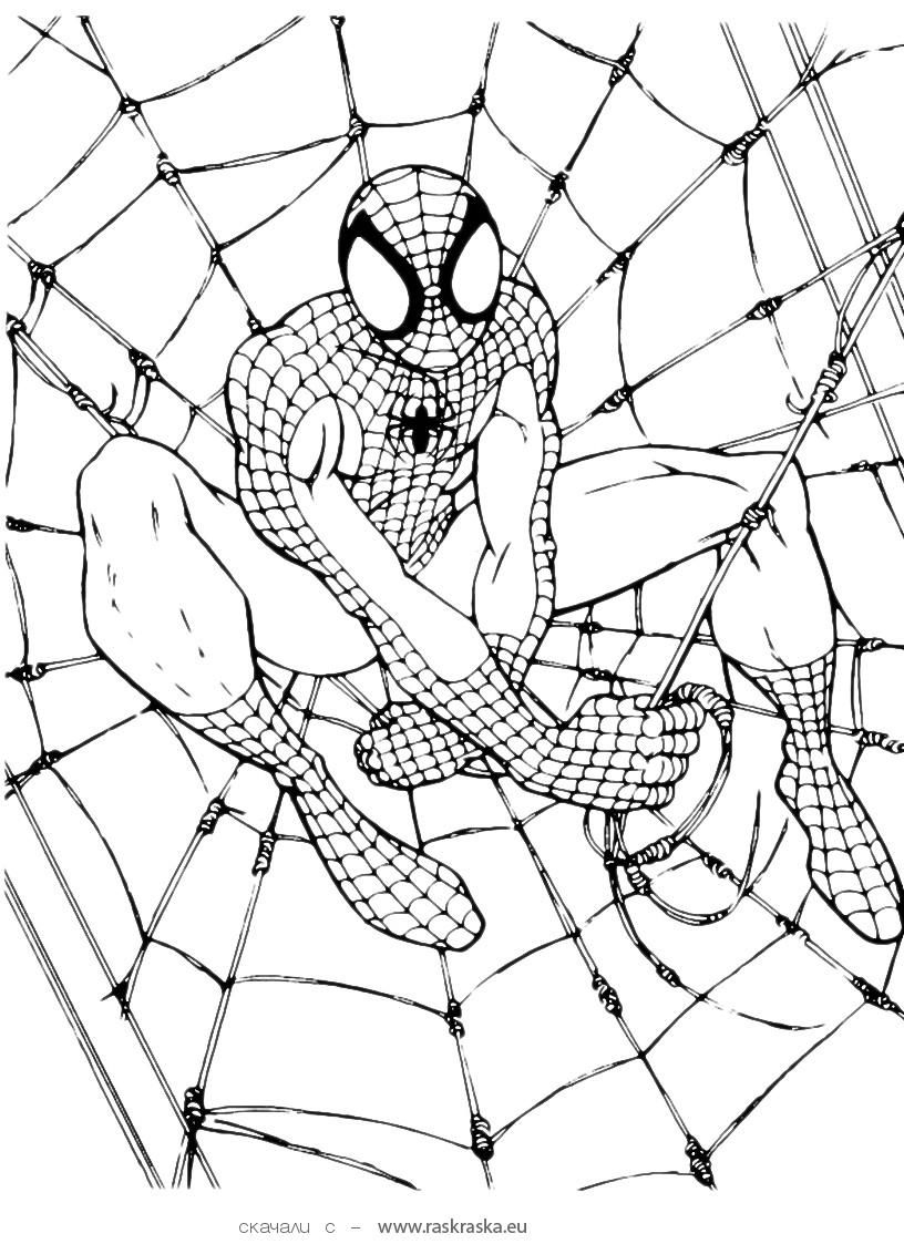 Free Printable Spiderman Coloring Pages For Kids | Home Furniture - Free Printable Spiderman Coloring Pages