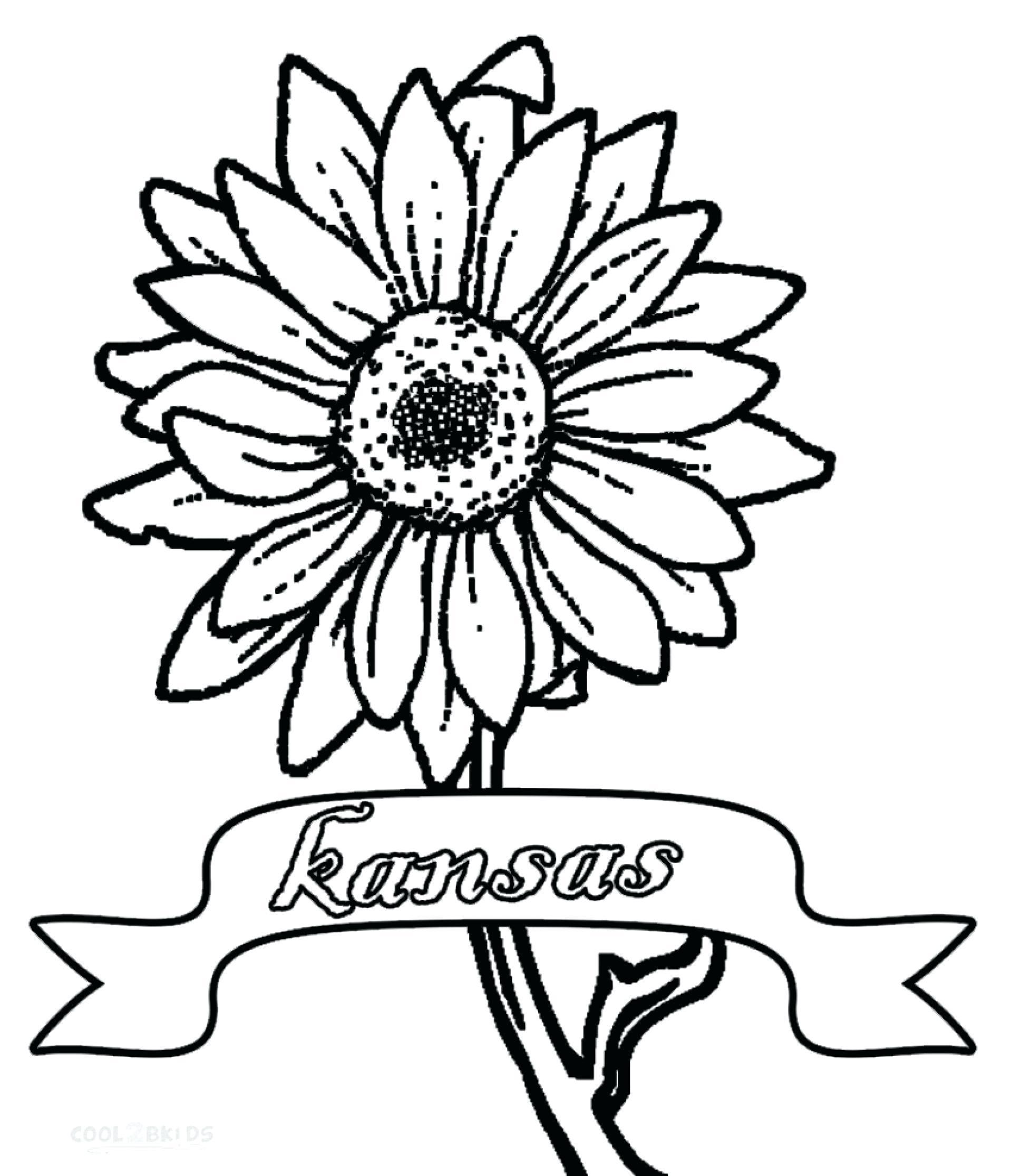 Free Printable Sunflower Stencils Sunflower Clip Art - Classy World - Free Printable Sunflower Template