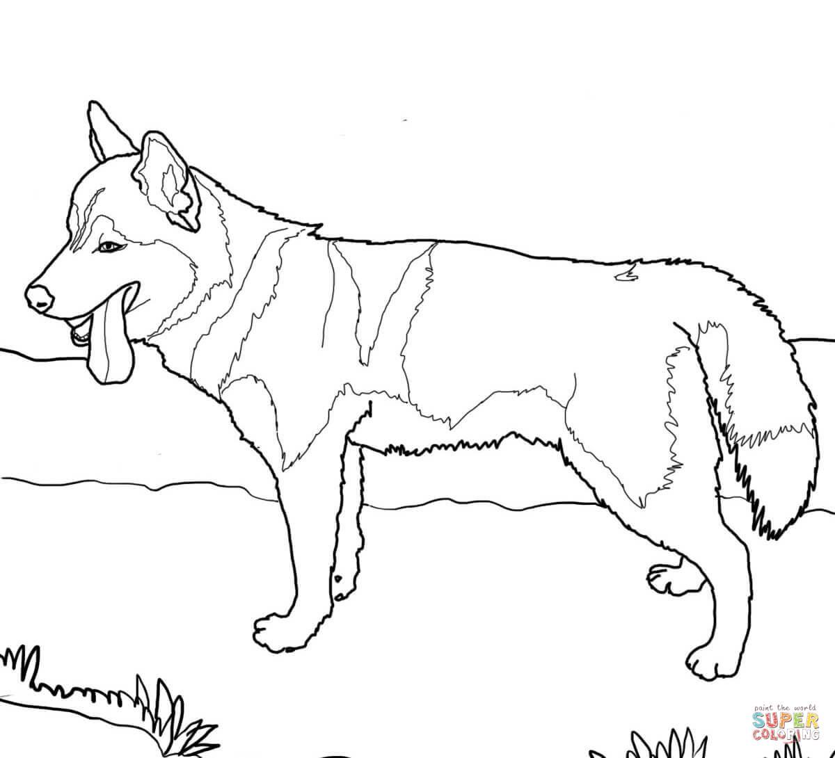 German Shepherd Dogs Coloring Page Free Printable Coloring Pages - Free Printable Dog Coloring Pages