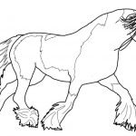 Gypsy Vanner Horse Coloring Page | Free Printable Coloring Pages   Free Printable Horse Coloring Pages
