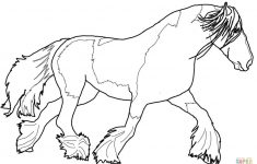 Gypsy Vanner Horse Coloring Page | Free Printable Coloring Pages - Free Printable Horse Coloring Pages