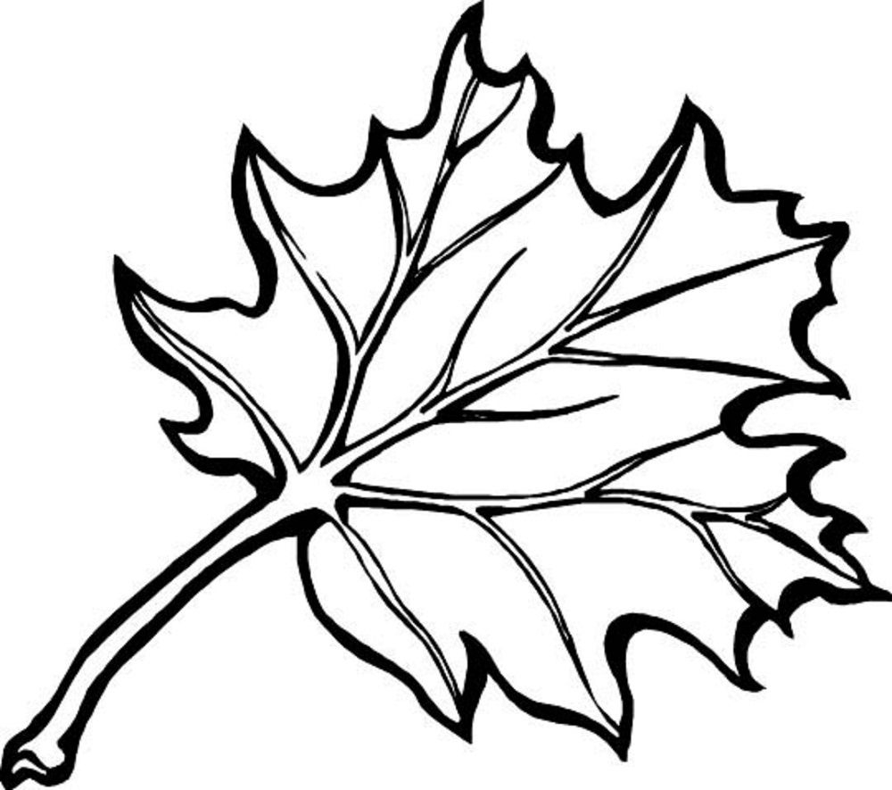 Leaf Coloring Pages Printable | Coloring Pages For Kids | Pinterest - Free Printable Fall Leaves Coloring Pages