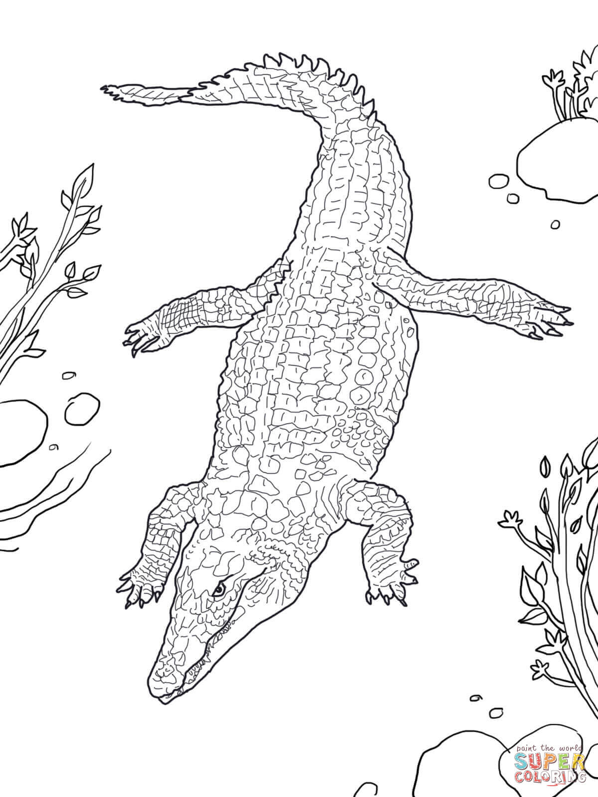Nile Crocodile Coloring Page | Free Printable Coloring Pages - Free Printable Pictures Of Crocodiles