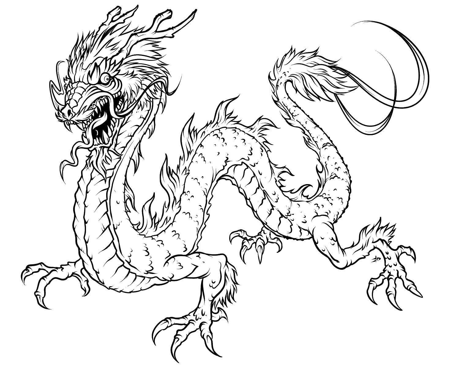 Online Coloring Pages Chinese, Coloring Page Chinese Dragon Dragons. - Free Printable Chinese Dragon Coloring Pages