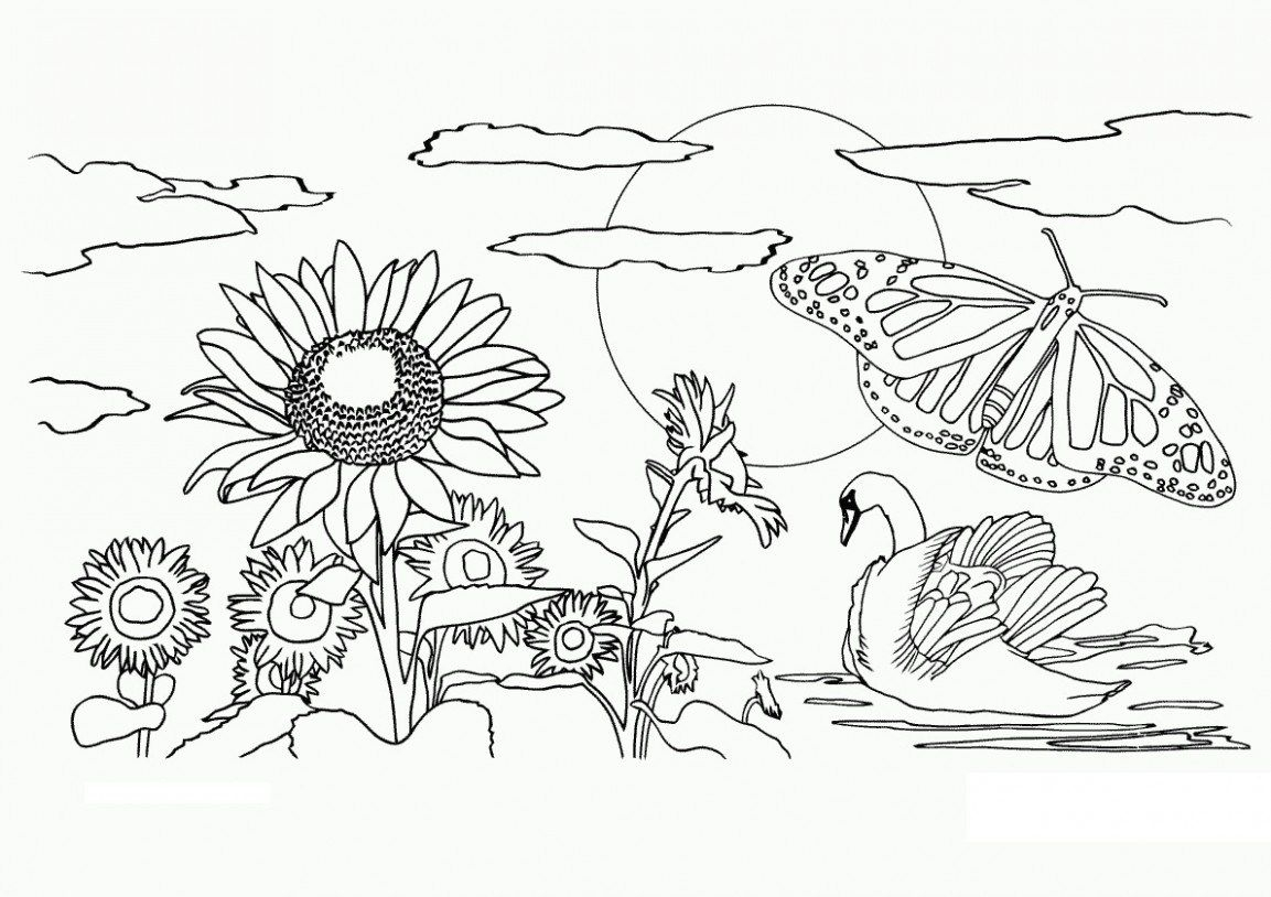Pinpainting Nature On Paintingnature.club | Coloring Pages - Free Printable Nature Coloring Pages