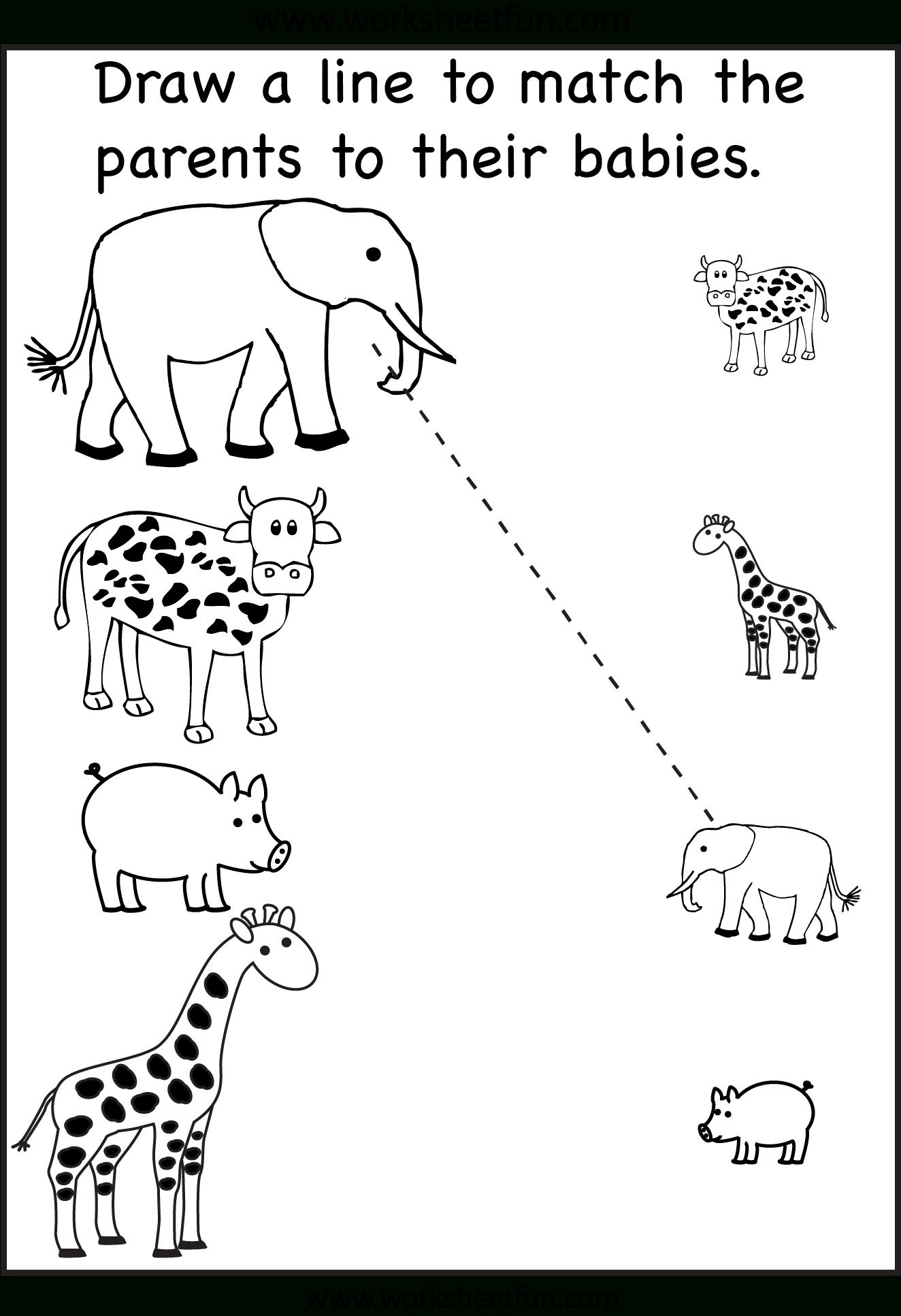 Preschool Matching Worksheets / Free Printable Worksheets – Worksheetfun - Free Printable Same And Different Worksheets
