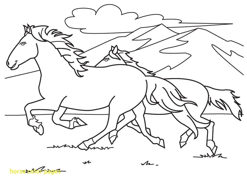 Running Horse Coloring Pages | Scagraduatecouncil - Free Printable Horse Coloring Pages