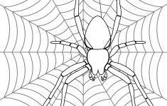 Free Printable Spider Web